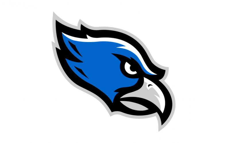 Farmington Valley Hawks Baseball Club logo